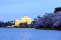 Jefferson Memorial an der Dämmerung, Washington DC Lizenzfreies Stockfoto