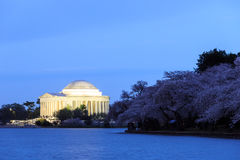 Jefferson Memorial durante Cherry Blossom Festival Washi Foto de archivo