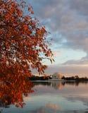 Jefferson Memorial in fall Stock Image