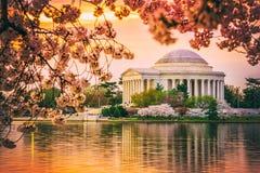 Jefferson Memorial in gelijkstroom tijdens de lente Stock Foto