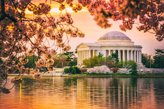 Jefferson Memorial i DC under våren Arkivfoto