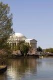 Jefferson Memorial på den tidvattens- handfatet Fotografering för Bildbyråer