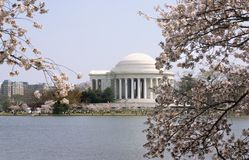 Jefferson memorial in spring Stock Photos