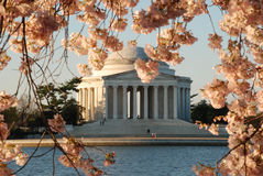 Jefferson Memorial in Spring Royalty Free Stock Images