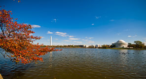 Jefferson Memorial and the Tidal Basin Royalty Free Stock Photos