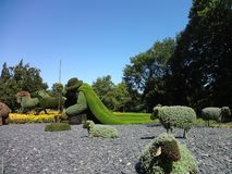 jego barania baca Ogród botaniczny Montreal Kanada fotografia stock