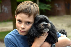 jego pies chłopca Fotografia Stock