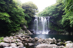 Jeju, πτώση στοκ φωτογραφίες με δικαίωμα ελεύθερης χρήσης