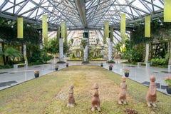 JEJU, COREIA - 27 DE JANEIRO DE 2014: Jardim botânico de Yeomiji Foto de Stock Royalty Free