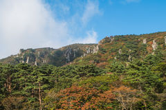 Jeju Halla Mountain, itinéraire de Yeongsil Photo libre de droits