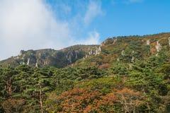 Jeju Halla Mountain, ruta de Yeongsil Foto de archivo libre de regalías