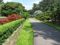 Jeju  Island ,  botanical garden Royalty Free Stock Image