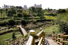 Jeju Island, Korea,volcanic island stock photography