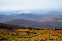 Jeju wyspa, Korea krajobraz Zdjęcia Stock