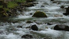 Jejua o córrego rochoso que corre em montanhas caucasianos, em kayaking e em esportes extremos filme