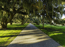 Jekyll Island Club Hotel bicycle path at sunset Royalty Free Stock Photos
