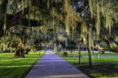 Jekyll Island Club Hotel walking path at sunset Royalty Free Stock Photos