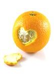 Jeleń łupy pomarańcze zdjęcia stock
