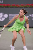 Jelena Jankovic at the 2010 BNP Paribas Open Royalty Free Stock Images
