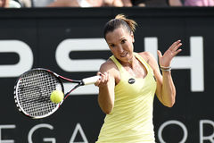 Jelena Jankovic Stock Photo