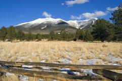 jeleni góry preria humphries Fotografia Royalty Free