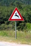 Jeleni skrzyżowanie ostrzega drogowego znaka ostrzega że rogacze często podróżują na drogach, przetrawersowywają lub lokalizować  fotografia stock