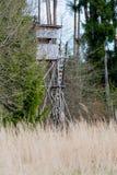 Jeleni stojak przed łąką w Naturalnej rezerwy schoenb Fotografia Royalty Free