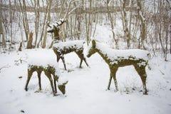 Jelenie statuy mech w zima śniegu Zdjęcie Stock