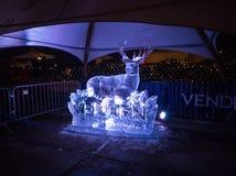 Jelgava/Letónia - 10 de fevereiro de 2017: Gelo iluminado branco s dos cervos imagem de stock