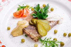 Jellied pork and beef with dill and parsley on the plate Royalty Free Stock Image