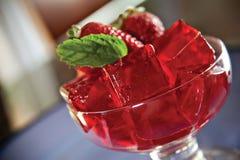 Jello红色碗 免版税库存图片