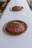 Jello è a forma di come i cervelli umani a Georgia Zombie Festival fotografia stock