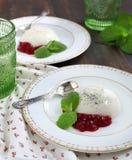 Jello de la leche con con la salsa de arándano Imagen de archivo libre de regalías