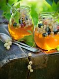 Jelly with berries Stock Photography