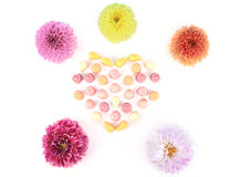 Jelly candies with flowers. stock photography