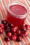 Jelly with Cranberries Royalty Free Stock Photo