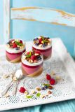 Jelly dessert  layers like panna cotta: coffee, chocolate, raspberries, coconut mmilkilk royalty free stock image