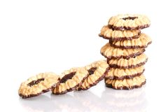 Jelly filled chocolate cookies Royalty Free Stock Photos