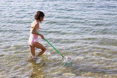 Jelly fish catch. A caucasian child catching jellyfish with a net Stock Image