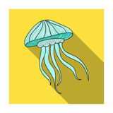 Jelly fish icon in flat style isolated on white background. Sea animals symbol stock vector illustration. Jelly fish icon in flat design isolated on white Royalty Free Stock Image