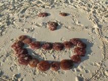 Jelly fish smiley Royalty Free Stock Photos