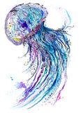Jelly fish watercolor and ink painting Stock Images