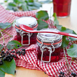 Jelly and fresh elder berries Stock Photography