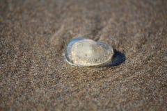 Jelly Heart par la mer Image stock