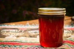 Jelly Jar Fotografía de archivo libre de regalías