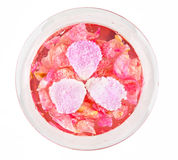 Jelly with rose petals Stock Photo