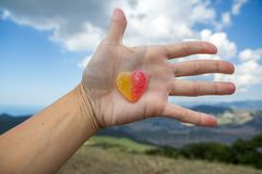 Jelly sweet candy heart on outstretched palm. Against the background of nature Stock Photo