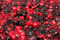 Jelly Topping With Berries royalty-vrije stock foto