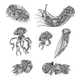 Jellyfish graphic patterns. Abstract illustrations. Royalty Free Stock Image