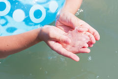 Jellyfish in the hands Stock Photos